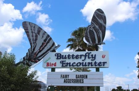 lucas butterfly garden