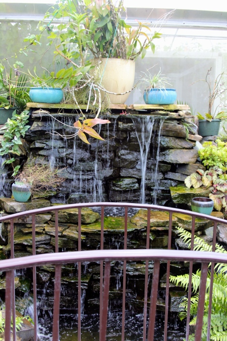 lukas nursery butterfly garden